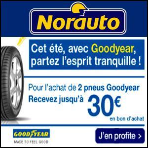 Jusqu'à 100€ remboursés en bon d'achat pour l'achat de pneus été