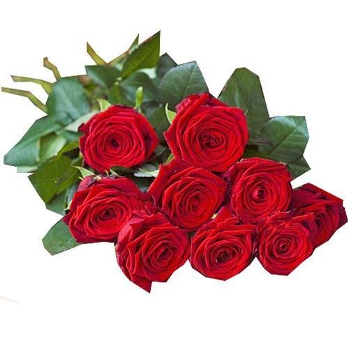 Bouquet de 10 roses Premium tige 60 cm