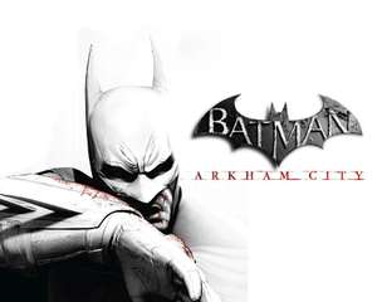 "Batman Game of the Year Pack : ""Batman Arkham Asylum GOTY"" + ""Batman Arkham City GOTY"" sur PC (steam)"
