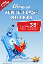 Vente flash été 2013 : Billet Disneyland
