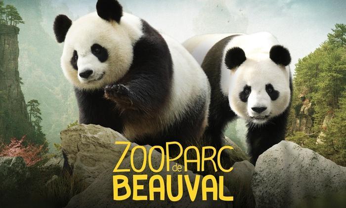 Entrée adulte ou enfant au zoo parc de Beauval