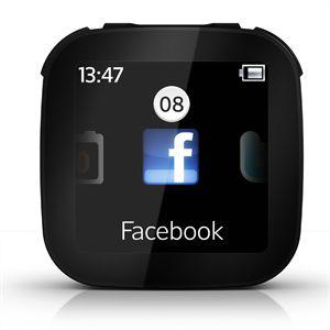Ecran déporté Bluetooth Sony LiveView
