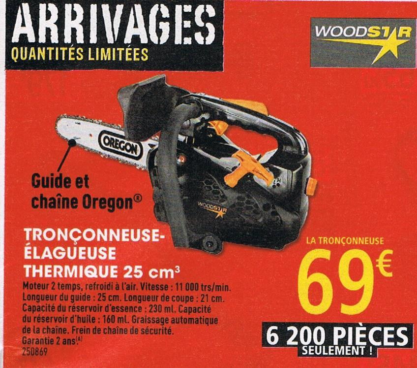 Tronçonneuse-élagueuse thermique Woodstar 25 cm3