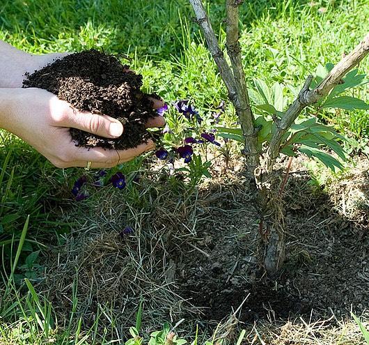 Distribution gratuite de compost jusqu'à 200 L par foyer (sur présentation d'un justificatif de domicile)