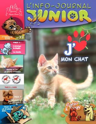"""Magazine gratuit pour enfant """"L'info-journal junior"""""""