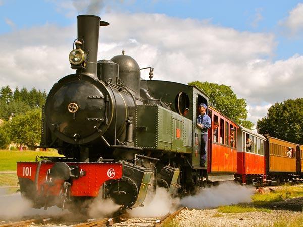 Aller-retour en Locomotive à Vapeur pour Adultes à 10,50€ et pour Enfants