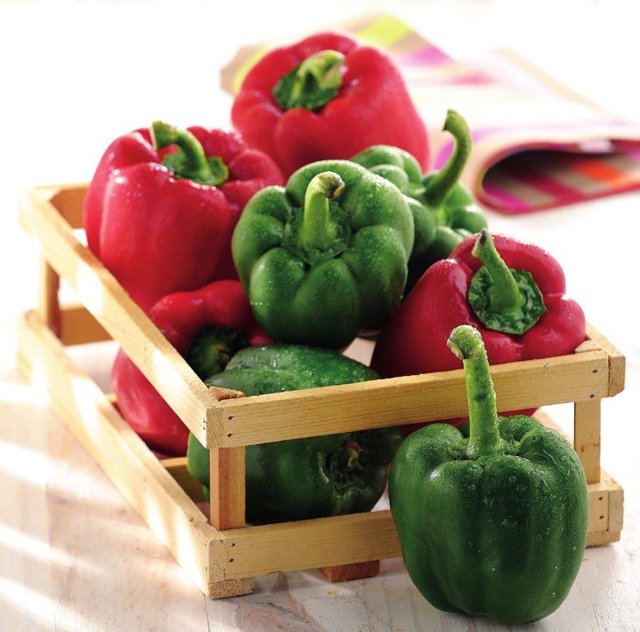 1 Kilo de Poivrons vert ou rouge
