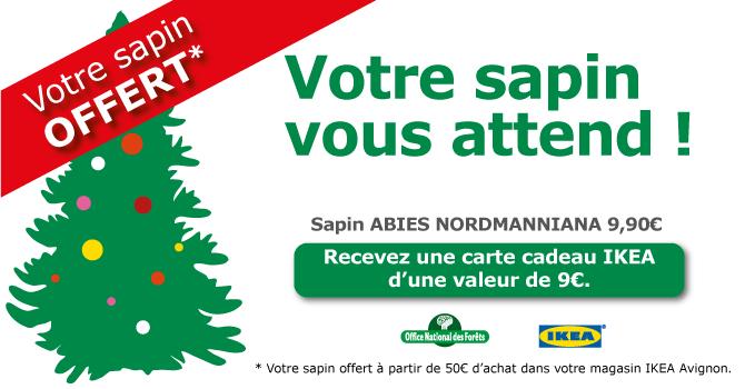 Sapin de Noël intégralement remboursé en carte cadeau
