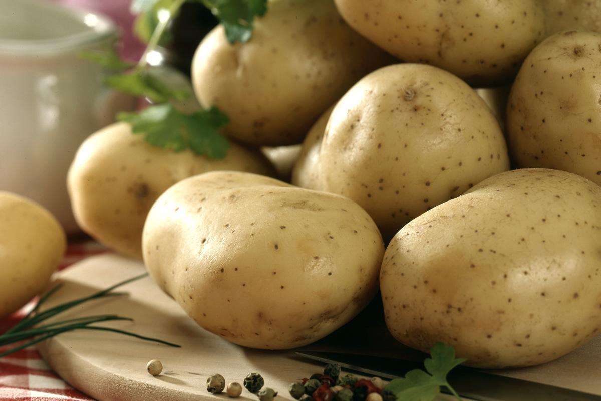 sachet de pommes de terre cat 2 vari t bintje 25 kg. Black Bedroom Furniture Sets. Home Design Ideas