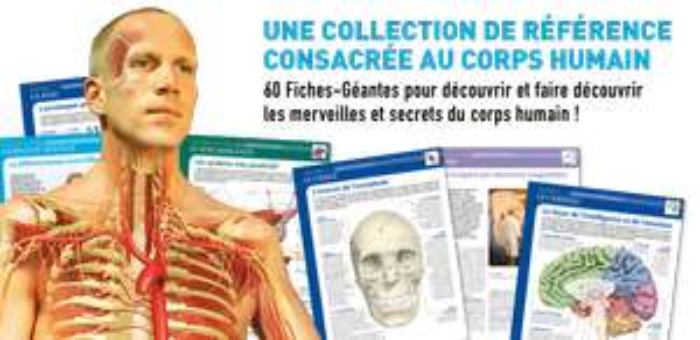 60 fiches géantes sur le corps humain + Cadeau