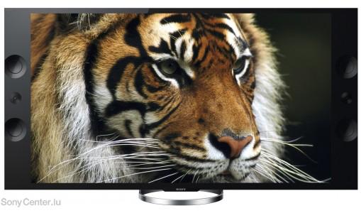 """Téléviseur 55"""" Sony KD-55X9005A Ultra HD"""