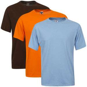 3 T-Shirts Fruit of the Loom/Jerzees ( Taille L uniquement )