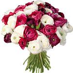 15€ de remise sur un bouquet à partir de 29€ avec Buyster, soit le bouquet de 40 roses