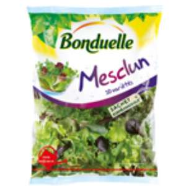 Salade Mesclun Bonduelle 145g