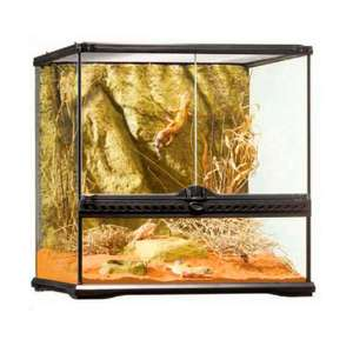 Exo Terra Terrarium en verre Natural Terrarium