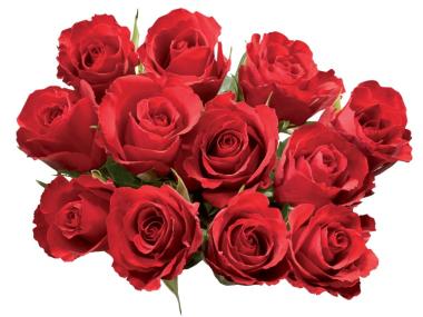 Bouquet de 12 roses (3 coloris au choix)