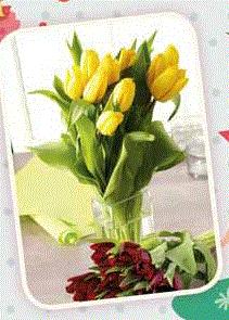 Uniquement Samedi 08/03 : Bouquet de 9 tulipes ou de 12 roses