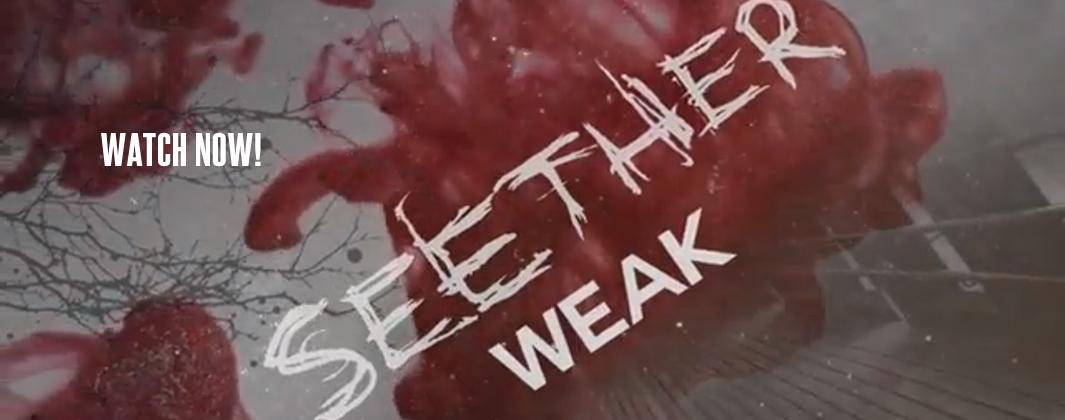 Nouveau Single du groupe Seether gratuit - Weak