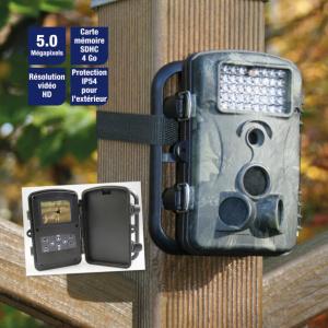 Appareil photo automatique pour la surveillance d'un local ou l'observation d'animaux