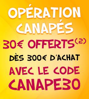 -30€ dès 300€ d'achat sur les canapés
