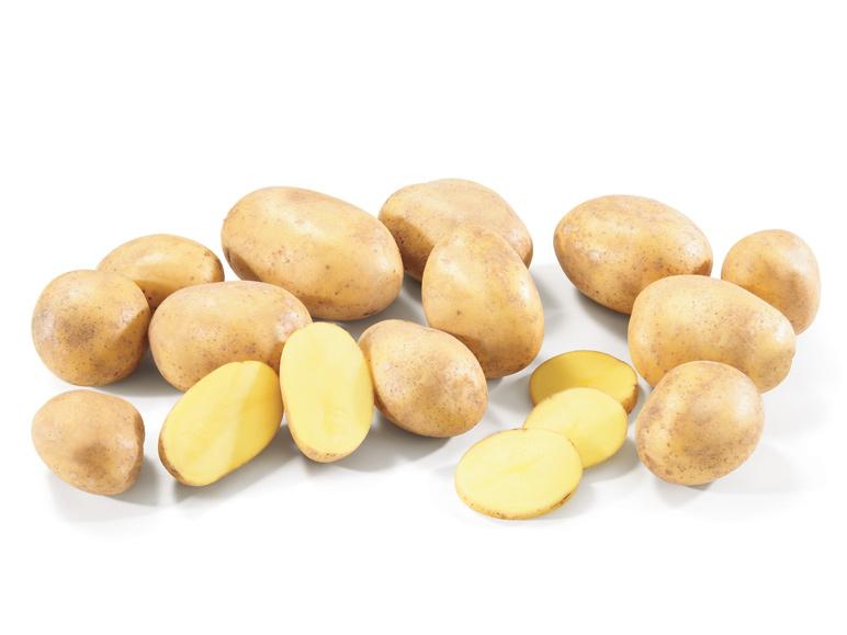 Dix kilos de pommes de terre