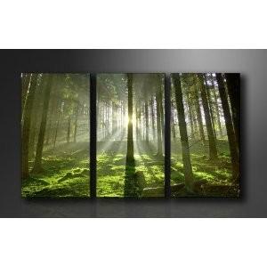 Images sur toile (nombreux motifs/paysages, tailles, triptyques...),