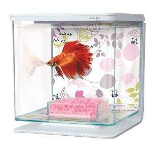 starter kit aquarium 2 L Betta Floral