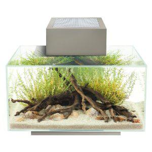 Aquarium Fluval Edge 23L tout équipé