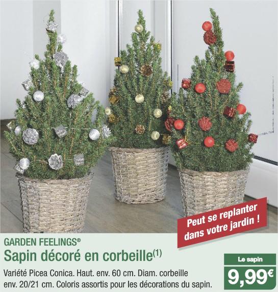 Sapin décoré en corbeille qui peut se replanter en jardin (Hauteur 60cm)