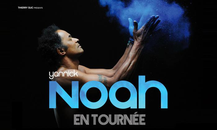 1 place de concert Yannick Noah (catégorie debout) le 10 janvier à Lille